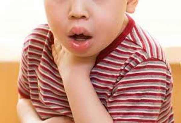 У детей от укусов клопов может развиваться анафилактический шок