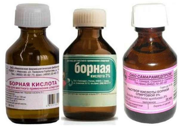Борная кислота - эффективное средство вывести тараканов