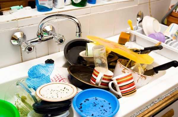 Жуки, клопы и тараканы говорят о том, что нужно убрать в доме