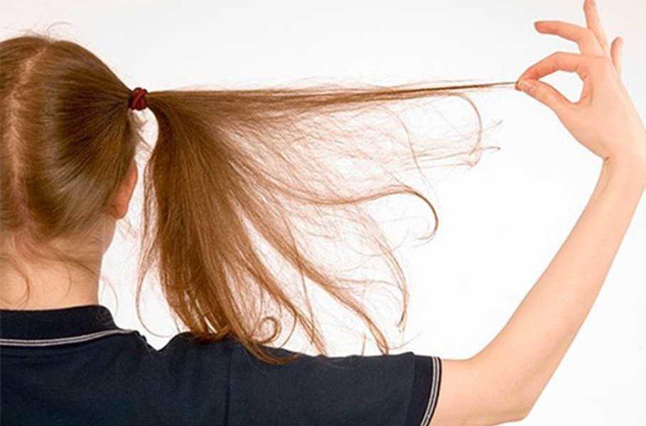 К чему снятся вши в волосах у ребенка по сонникам Миллера, Цветкова, Ванги, Фрейда