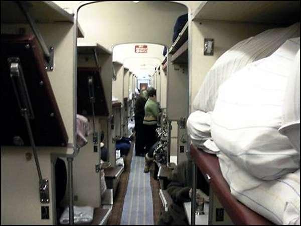 Как можно заразиться лобковыми вшами: в поезде и других общественных местах