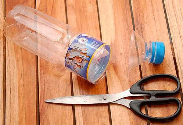 Самодельная ловушка из бутылки для муравьев