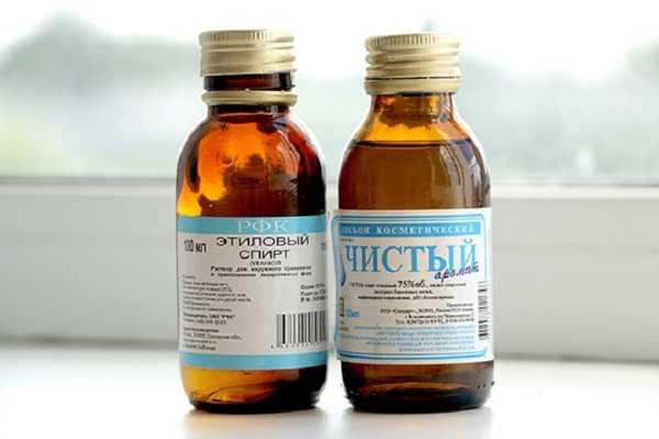 Медицинский спирт поможет защитить тело от укусов