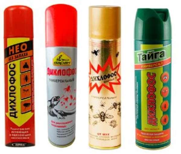 Промышленные средства от тараканов при самостоятельно обработке