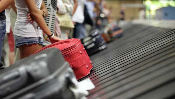 Клопов можно привезти домой с командировки или отдыха